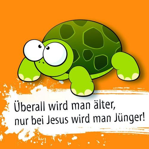 Schildkröte (Kühlschrankmagnet)